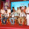 State Award 2016 Gallery