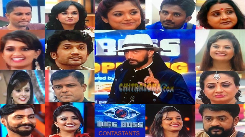 bigg boss4 contestants image