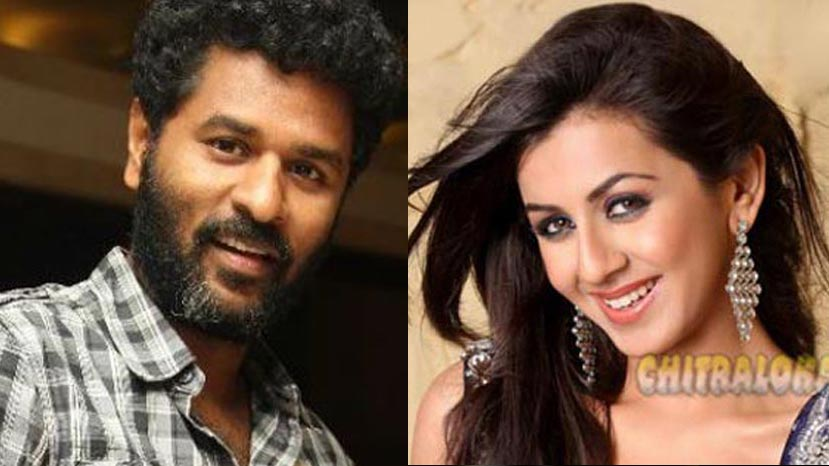 nikki galrani teamed  up with prabhudeva